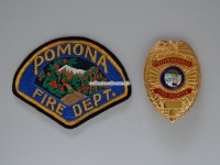 Badge Professional Fire Fighter California